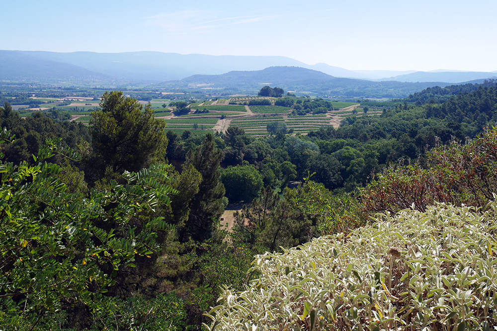 Views-from-Roussillon